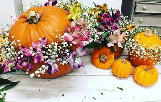 Botanical Pumpkins – DIY Pumpkin Ideas