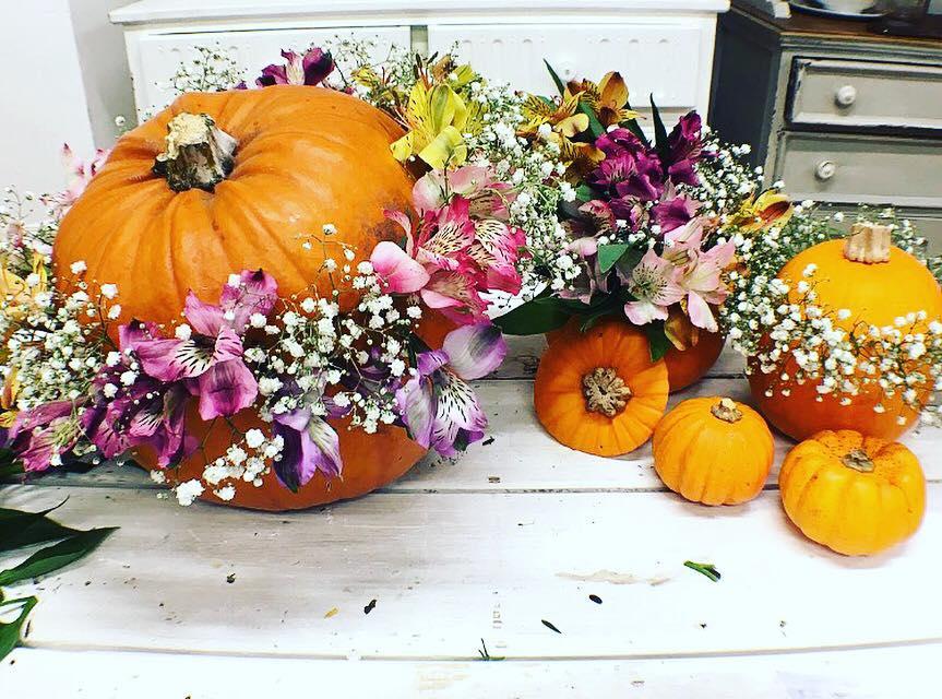 Botanical Pumpkins - DIY Pumpkin Ideas